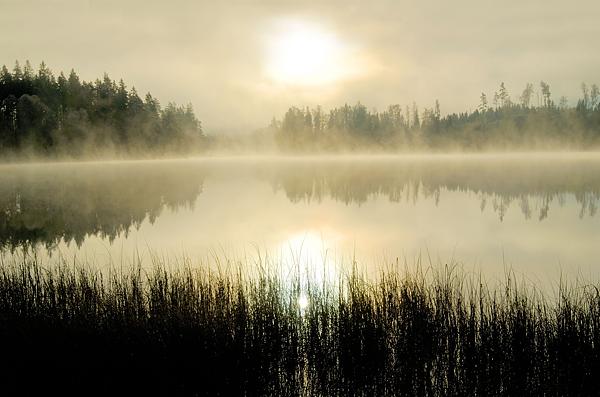 Solopgang-over-svensk-sø